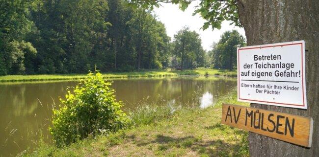 Bleibt das alte Jacober Bad Angelteich oder wird es ausgebaggert und eine grüne Wiese?