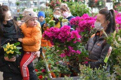 Vier Generationen einer Familie aus Großhartmannsdorf haben sich am Freitag im Gartencenter des OBI-Baumarktes in Freiberg nach Blumen und Pflanzen für Muttertag, Terrasse und Garten umgeschaut. Dabei ließ sich Mutter Michelle Eger (vorne links) mit Tochter Mariella (2) von Mitarbeiterin Theresa Engelmann (r.) zu einer Drillingsblume für ihre Terrasse beraten. Auch Sohn Lenny (9), Uroma Anita Vogel und Oma Katrin Pastor (h. v. l.) bestaunten die Pflanzenvielfalt.