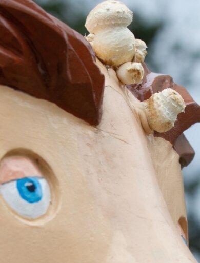 Was aus dem Kopf mancher Vater-und-Sohn-Figuren in Plauen wächst, das sind Pilze. Das Holz benötigt dringend intensive Pflege.