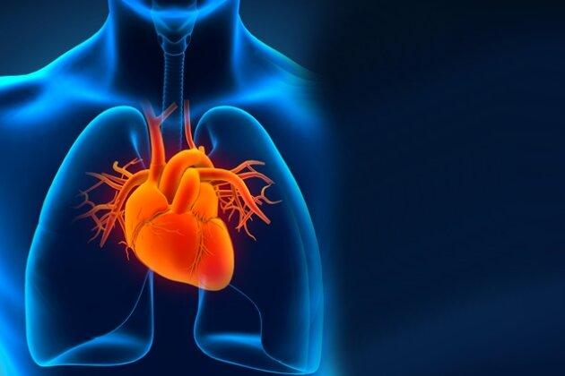 Diagnose Herzrhythmusstörung