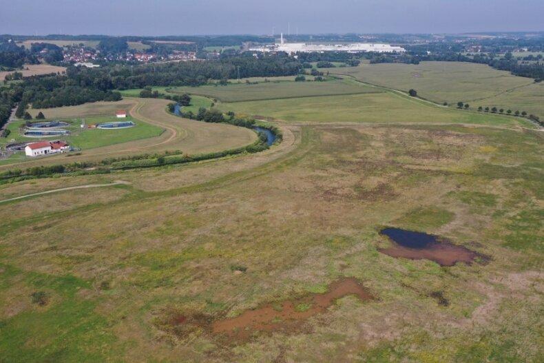 Blick auf das Überschwemmungsgebiet am Rande von Crossen. Hier haben sich viele seltene Vogelarten angesiedelt. Andere nutzen das Terrain beim Vogelzug zum Rasten und Kräfte sammeln.