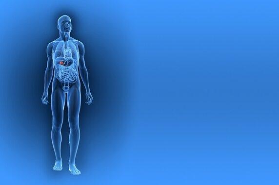 Diagnose Gallensteine