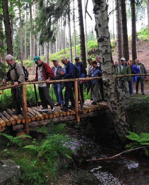 """<p class=""""artikelinhalt"""">Über Stock und Stein: Allein 165 Männer und Frauen nahmen an der Wanderroute 10 rund um den Ziegenberg teil. </p>"""