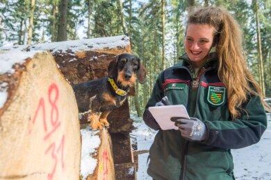 Anne Borowski ist die neue Revierförsterin von Bockau. Zu ihren Aufgaben gehören das Auflisten des geernteten Holzes. Rauhaardackelhündin Inge wird zum vielseitigen Jagdgebrauchshund ausgebildet.