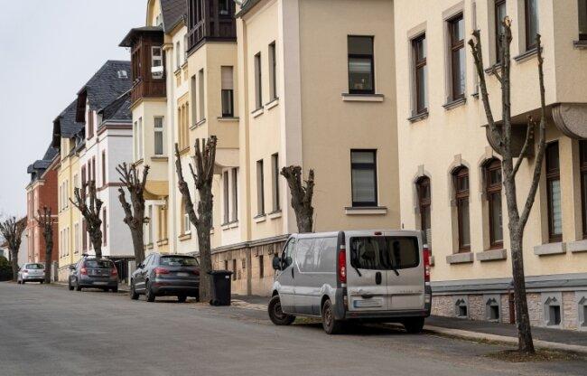 In der Friedrich-Engels-Straße in Treuen wurden ein Dutzend Bäume stark beschnitten. Nicht allen in Treuen gefällt das.