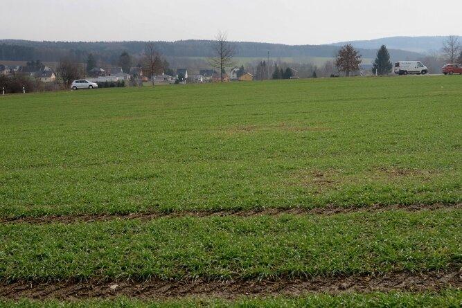 Die Fläche an der Perlaser Straße in Treuen, bisher landwirtschaftlich genutzt, soll Standort eines Einkaufszentrums werden.Foto: Joachim Thoß