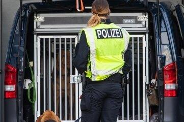 Die Diensthundeführerinnen hatten insgesamt vier Hunde dabei.