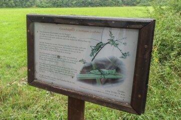 Statt Tafeln, auf denen nur Text zu lesen ist, soll Natur erlebbar werden.