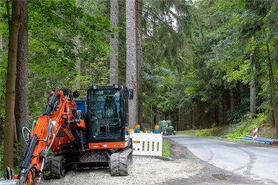 Einen Monat lang war die Wernesgrüner Straße zwischen Schnarrtanne und der Einmündung B 169 oberhalb Wernesgrün gesperrt. Die angekündigten Bauarbeiten wurden jedoch verschoben. Inzwischen wurde die Trasse für eine halbe Woche wieder geöffnet, ab Montag ist sie wieder zu.