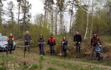 Mitglieder der Kirchgemeinde Mittweida haben im Bürgerwald Bäume gepflanzt.