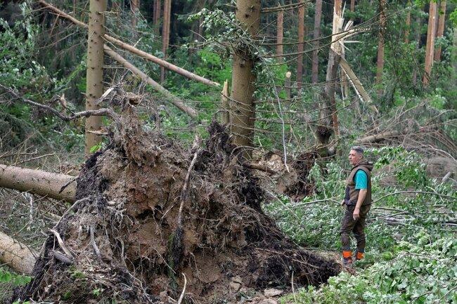 Ein Sturm hinterlässt am 17. Juli gegen 19.30 Uhr eine Spur der Verwüstung in mehreren Waldgebieten bei Hohenstein-Ernstthal. Revierleiter Frank Günther von der Rotenhanschen Forstverwaltung verschafft sich danach im Revier Oberwald einen ersten Überblick über die Schäden. Wald und Wanderwege im Oberwald und Rüßdorfer Wald sind wegen massiver Schäden blockiert und gesperrt.