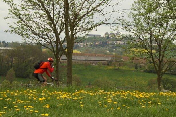 Kurz nach dem Wander-Start bietet sich ein Blick über die Metzdorfer Wiese zur Augustusburg.