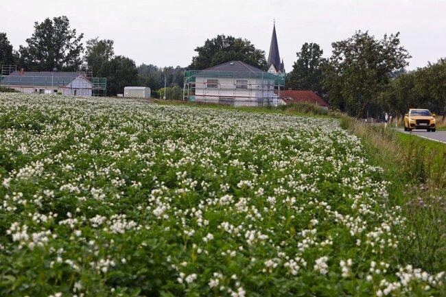 Auf den Feldern neben einem neuen Wohngebiet ist ein Solarpark geplant. Foto: Kretschel/Archiv