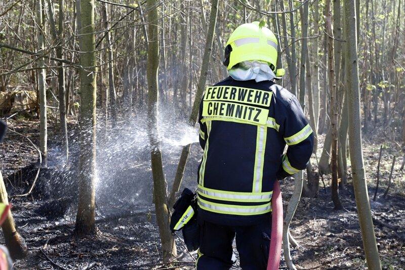 Feuerwehr löscht Brand in Adelsberger Wald