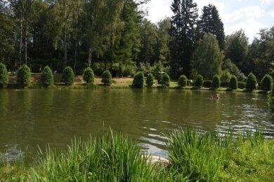 Der Förderverein Naturbad Bad Elster lädt am morgigen Samstag ab 13 Uhr zum Sommerpicknick in historischer Bad-Atmosphäre.