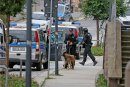 Die Moritzstraße in Limbach war am Dienstagabend fest in der Hand von Polizisten. Mit Hunden suchten sie nach dem bewaffneten Mann. Er wurde im Postgebäude vermutet, zu dessen Eingang die Treppe (rechts) führt. Doch nach einer Durchsuchung stand fest: Die Annahme war falsch.