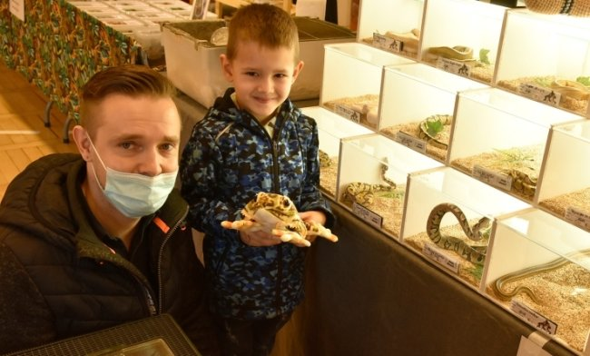 Chris Krause und sein Sohn Charlie aus Reichenbach vor Terrarien mitKönigspythons. Beide haben selbst welche zu Hause.