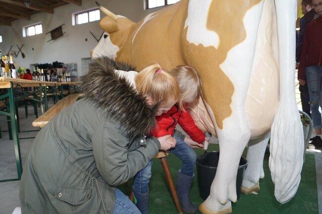 """Zahlreiche Besucher der Eröffnungsveranstaltung der Reika-Landmarktscheune nutzten die Gelegenheit, selbst mal eine Kuh zu melken - """"Kuh"""" Leni nahm das gelassen hin."""