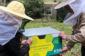 """Seit Donnerstag der """"dritter KSG-Firmenstandort"""": der Bienenstock in Gornsdorf."""