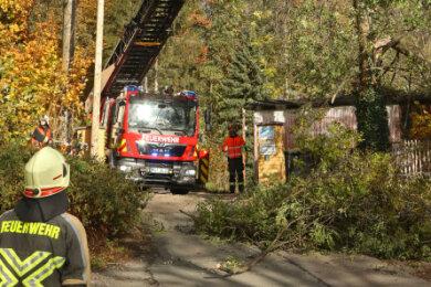 Die Einsatzkräfte der Freiwilligen Feuerwehr mussten an mehreren Bäumen Äste entfernen, die drohten, herabzustürzen.