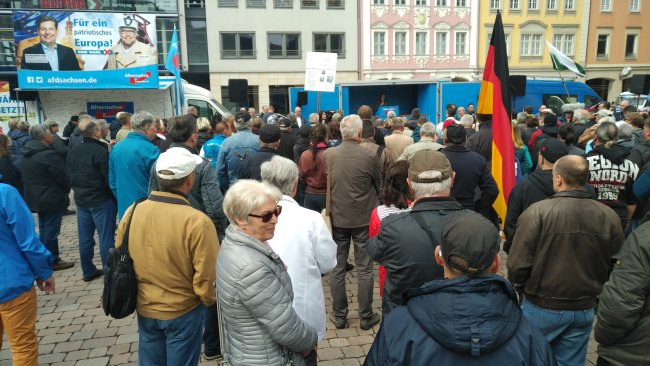 Die Kundgebung der AfD auf dem Marktplatz.