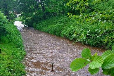 Der 10. Juni war der niederschlagsreichste Tag des vergangenen Monats. Die Wassermassen ließen kurzzeitig auch den Pegel des Zwota-Bach (Foto) deutlich steigen.