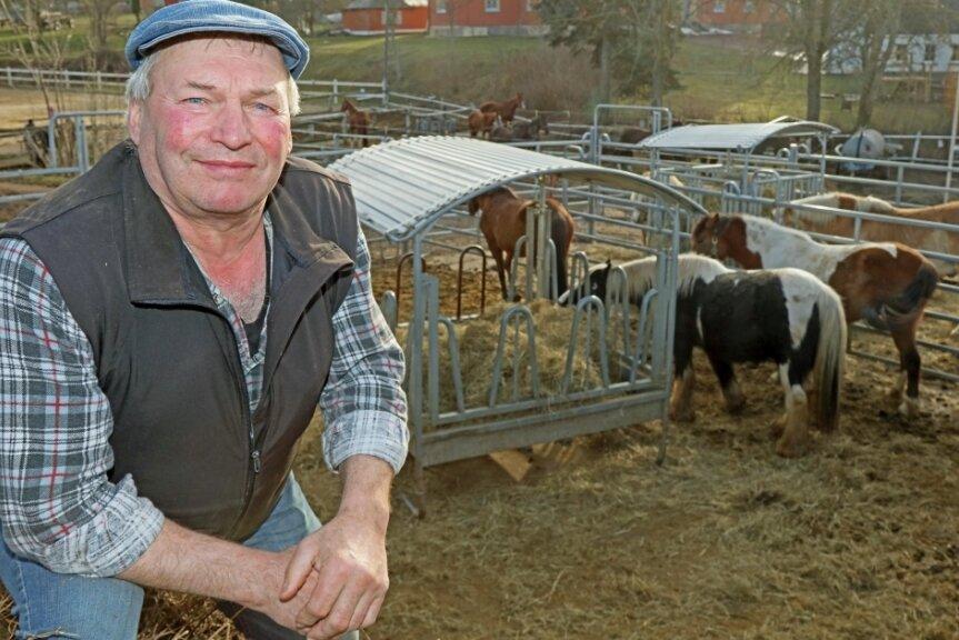 Pferdehofinhaber Dieter Unger hat den Lockdown genutzt, um zu bauen. Vier neue Ställe mit Offenhaltung hat er gemeinsam mit seinem Sohn gebaut. Doch die Tiere zieht es eher zu den Futterkörben als in die eingebauten Rückzugsboxen.
