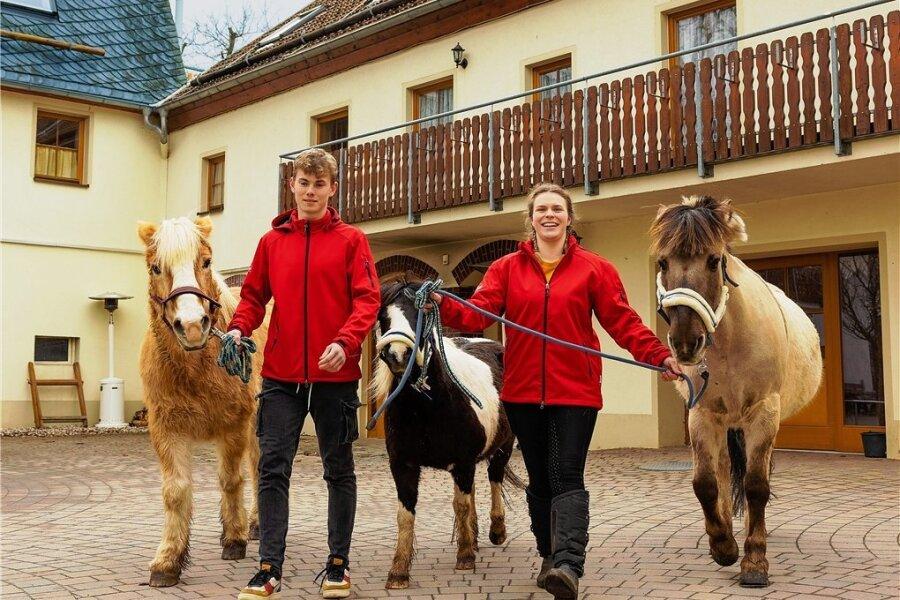 So viele Pferderücken frei für kleine Gäste! Fritz und Letitia kümmern sich auf dem Landgasthof Fischer bei Freiberg um die Pferde Luna, Jack und das Pony Max.