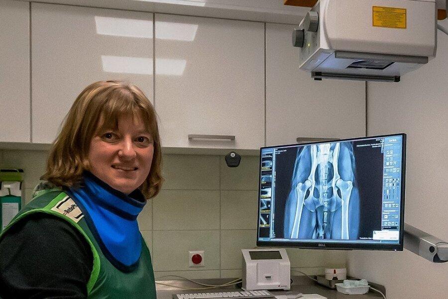 Dr. Cora Siebenaller röntgt einen Großpudel. Dieser Raum wurde bereits umgebaut und die darin enthaltene Technik auf den neuesten Stand gebracht.