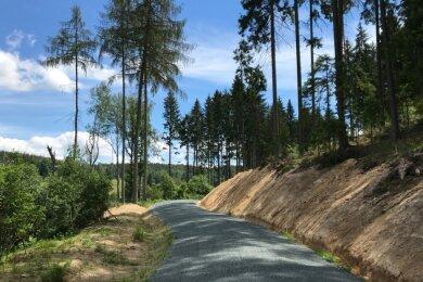 Bad Brambach und seine Umgebung bieten für Wanderungen viel Potenzial. Das Foto entstand Anfang Juli auf dem kürzlich ausgebauten, aussichtsreichen Weg zwischen dem Wachtbergsportplatz und Hohendorf.