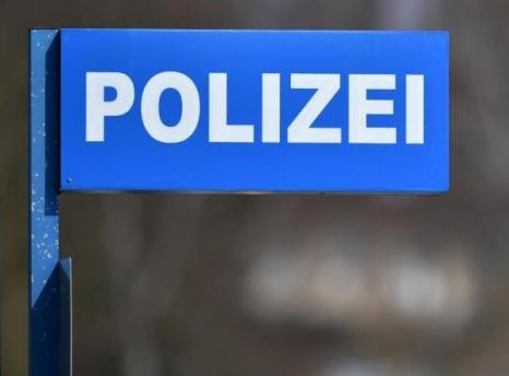 Regionalbahn fährt in Ziegenherde: fünf Tiere tot
