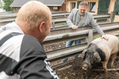 """Bestandteil der Drogentherapie in der Fachklinik """"Alte Flugschule"""" von Uwe Wicha (hinten) ist auch die Arbeit. Patienten kümmern sich dabei unter anderem um die Tiere eines kleinen Bauernhofs."""