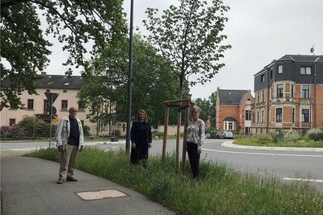 Sie haben an den Bahnhofstraßen-Linden noch mal nach dem Rechten geschaut. Von links: Peter Tillak, früherer Vereinsvorsitzender, Fielmann-Niederlassungsleiterin Doren Poser und die neue Vereinsvorsitzende Ines Schröter-Reißmann.