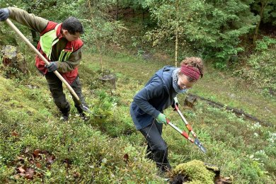 An einem felsigen Hang im Revier Erlbach arbeiten Magali Röhrich aus München und Sachsenforst-Mitarbeiter John Hahn an der Erhaltung eines Kreuzotterhabitats.