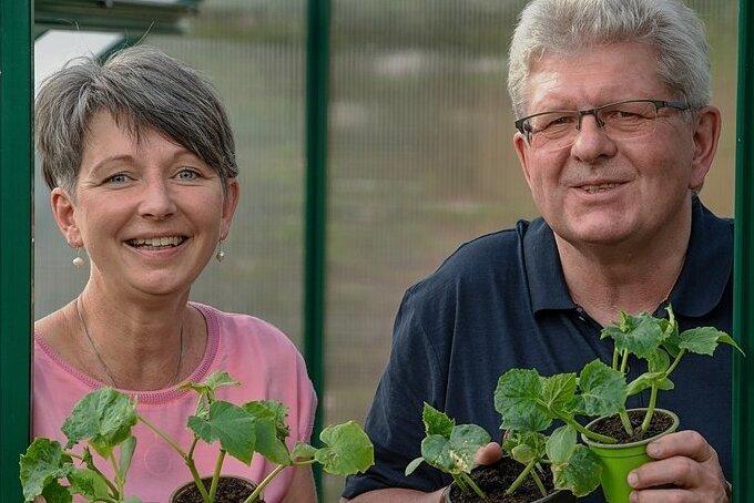 Ziehen aus Samen die in Vergessenheit geratene Bautzener Kastengurke: Heike Quendt und Horst-Hartmut Freter von Slow Food Dresden.