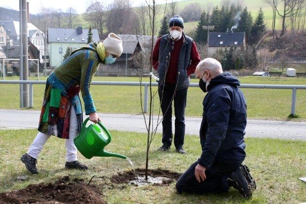Ulrike Malek, Andreas Kahl und Werner Lobeck (v. l.) gehörten am Sonntag in Pöhla zu den Teilnehmern der Baumpflanzung.