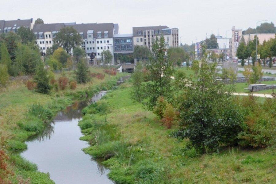 Der freigelegte Kappelbach an der Zwickauer Straße gilt als Paradebeispiel für Renaturierungen in Chemnitz.