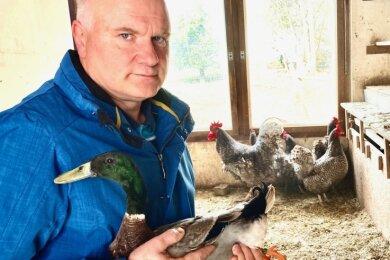 Ulrich Seidler hofft, dass sein rassiges Geflügel - darunter Enten und Hühner - bald wieder frische Luft schnuppern kann.