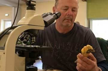 Bis zu den Zellstrukturen muss man manchmal beim Bestimmen der Pilzarten gehen. Die sieht Andreas Simon aus Zwönitz unterm Mikroskop.