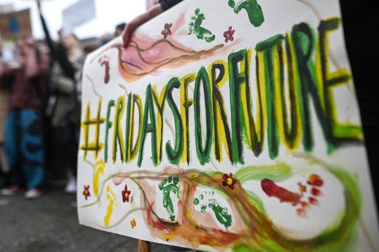 """Schild bei einer """"Fridaysforfuture""""-Demo im Frühjahr 2019."""