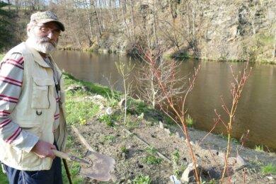 Nicht nur mit der Müllsammelaktion will der Krumhermersdorfer Anglerverein seinem Motto gerecht werden. Weil die Vereinsarbeit für den Vorsitzenden Frank Siegel ein naturbezogenes Geben und Nehmen ist, haben er und seine Mitstreiter Beete und Grünflächen angelegt, um den Uferbereich am Anglerheim zu verschönern.