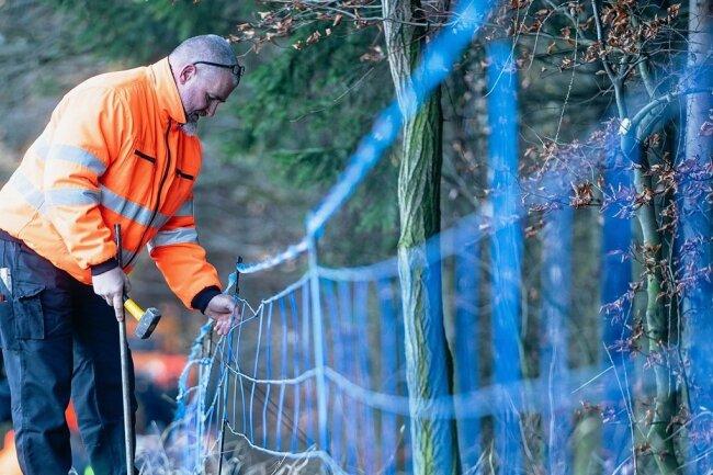 Ein solcher Wildzaun ist entlang der Grenze zu Polen aufgebaut. Landwirte fordern nun, diesen durch einen festen Zaun zu ersetzen.