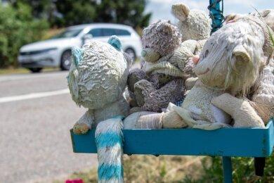 Ein Gedenkort mit Plüschtieren und Blumen erinnert an den schrecklichen Verkehrsunfall bei Oberhain, bei dem ein elfjähriges Mädchen im März 2019 ums Leben gekommen war.