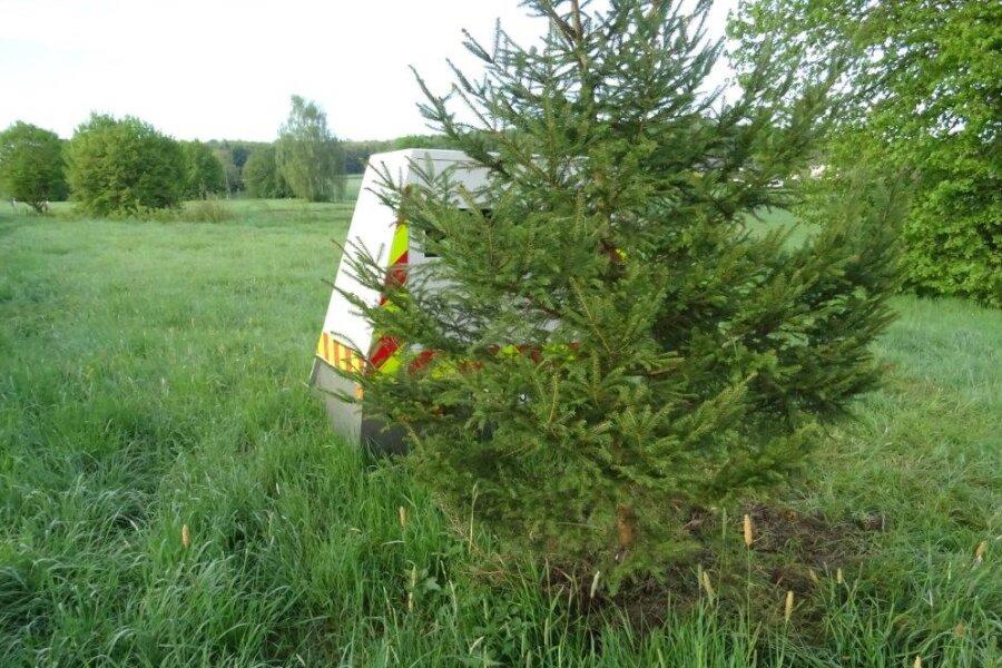 """""""Schmuckloser Baum behindert Radarmessung"""", meldete die Polizei Bitburg am Freitag."""