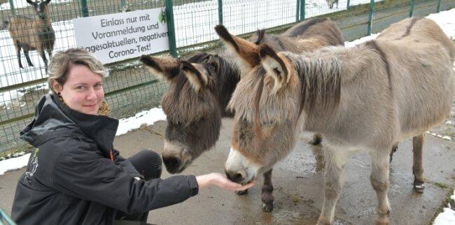 Tierpark-Mitarbeiterin Lisa Härtel - hier mit Ziege Liesbeth und den Eseln Christoph sowie Ella - freut sich schon auf die Besucher.
