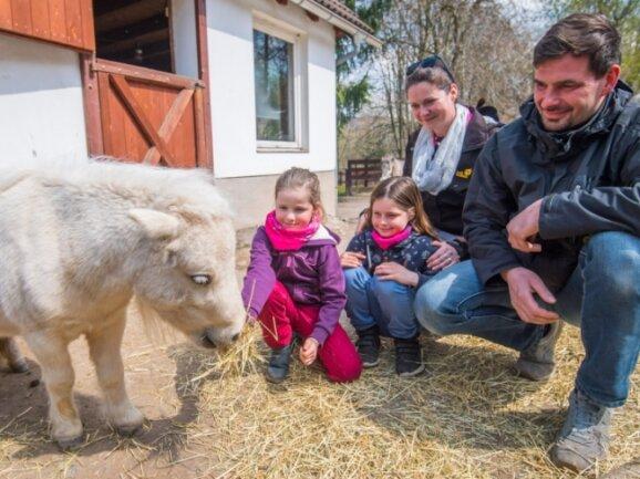 Der Zoo der Minis darf trotz Notbremse weiter öffnen. Darüber freuen sich Alissa Egermann, Maryana Egermann, Mutter Janka Egermann und Vater Marcus Weißflog (v. l.) - hier mit ihrem Patentier Trude.