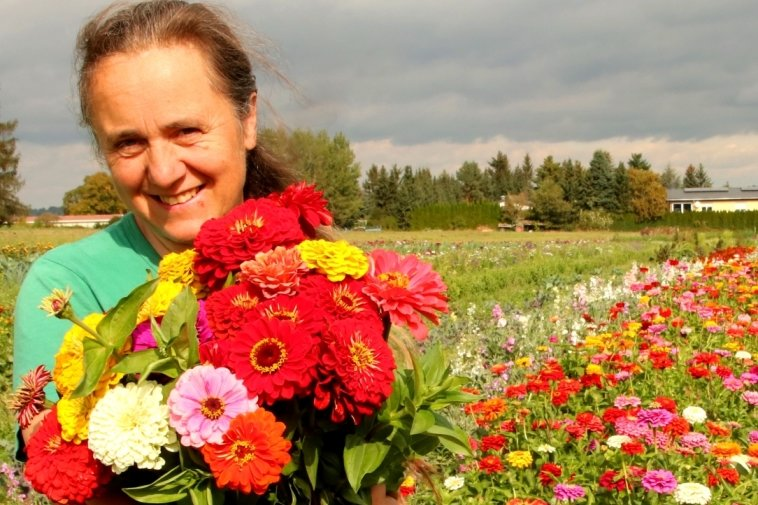 Wo die bunten Blumen blühen
