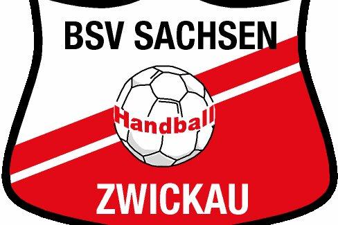 BSV Sachsen Zwickau kassiert zweite Saisonniederlage