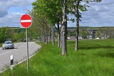 An der Reitzenhainer Straße in Mühlau sollen auf einem Wiesengrundstück bald Eigenheime gebaut werden.