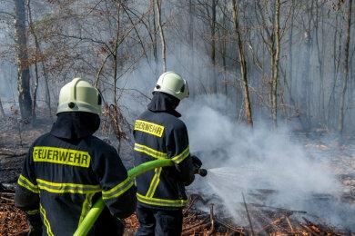 In einem Waldstück zwischen Altgeringswalde und Langenau ist am Montagvormittag ein Brand ausgebrochen.